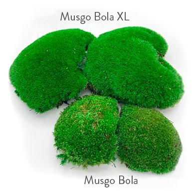 verdissimo
