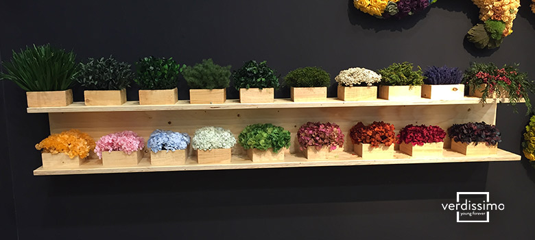 organize and display preserved flowers - verdissimo