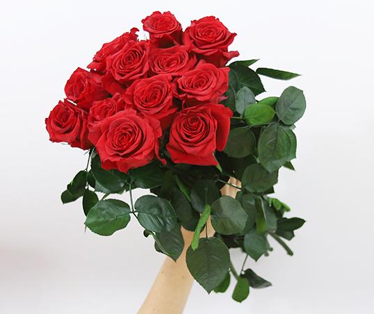 simbologia del numero de rosas en un ramo img - verdissimo