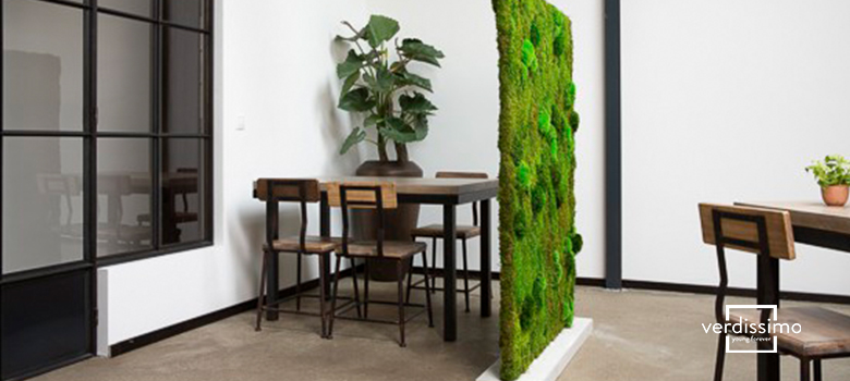 space dividers with moss and lichen - verdissimo