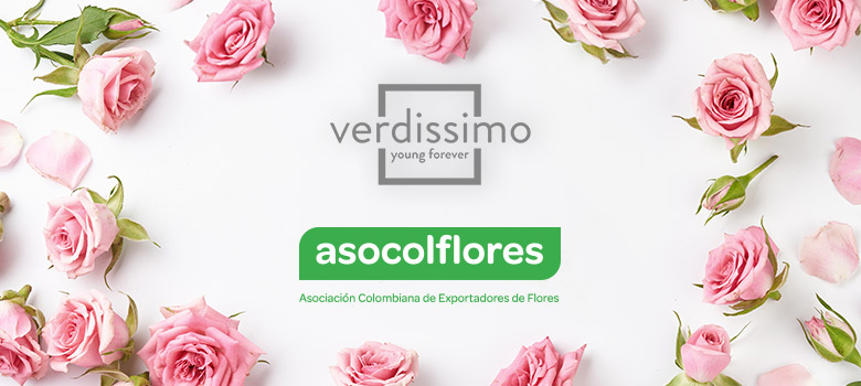 verdissimo and asocolflores a road to success - verdissimo