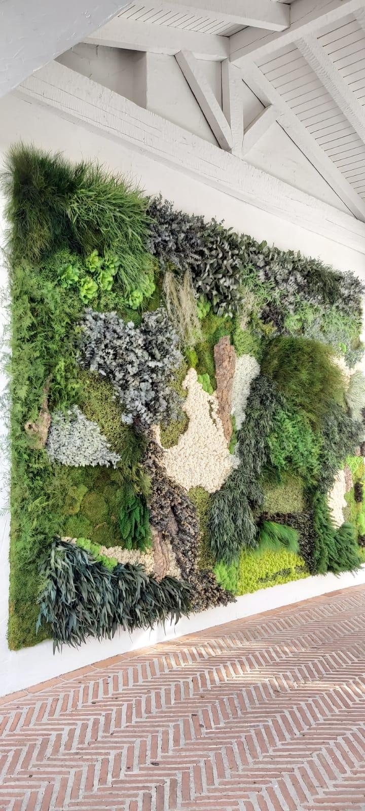 Muros preservado y artificial - Verdissimo