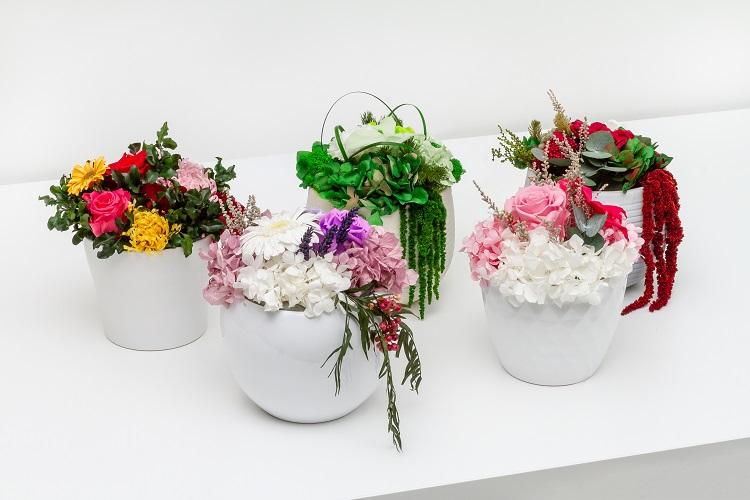 Mélange de couleurs fleurs et verts - Verdissimo