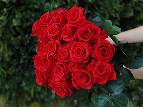 Ramo de rosas Rojas - Verdissimo