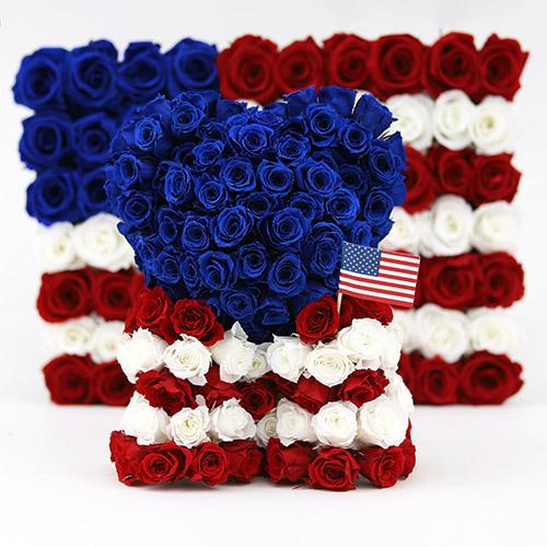 Rose - National Flower Emblem of United States
