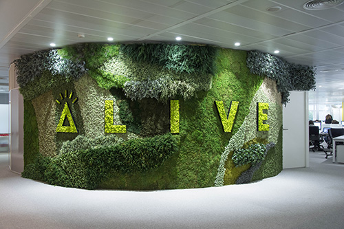 Logotipo Alive - Verdissimo
