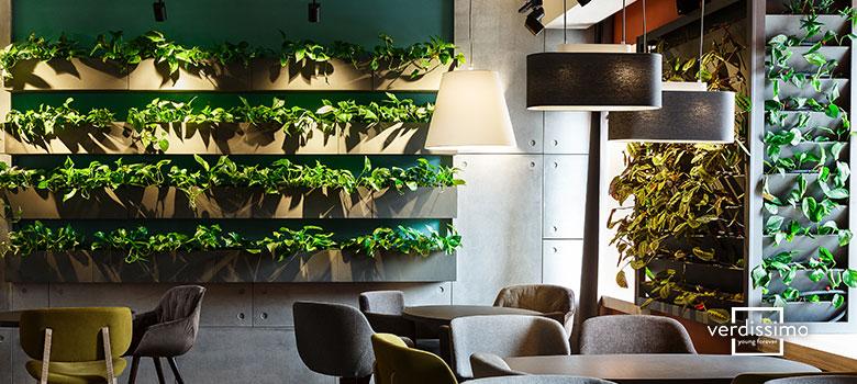 Decoración de cafeterías - Tendencias para 2021 - Verdissimo