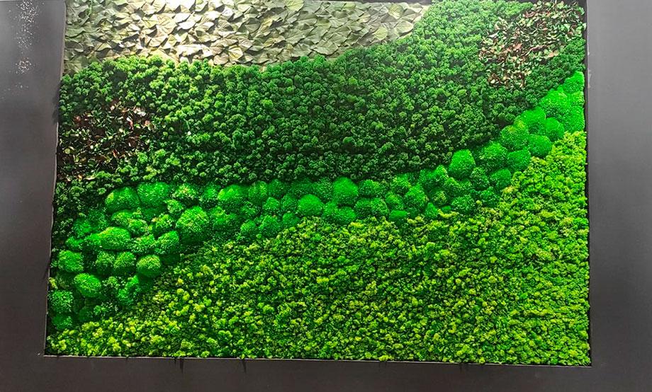 Decoracion pared de Musgo | Stand de Verdissimo en Iberflora 2021